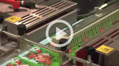 Overwrapping Small Tea Cartons at 90 per minute - LX025FF
